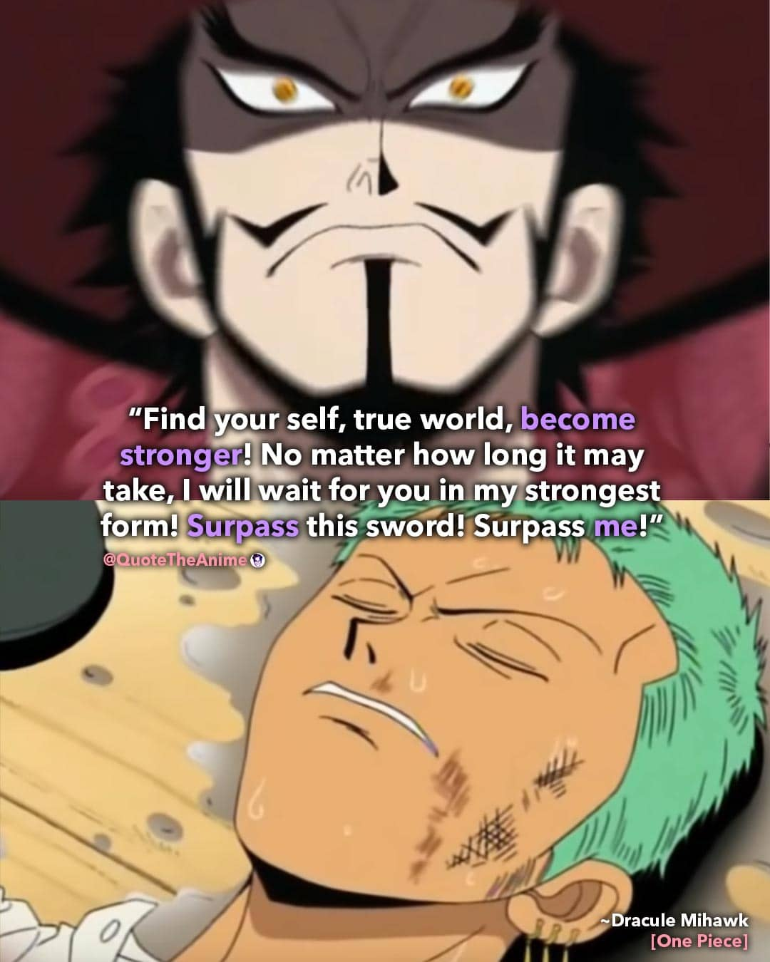 Top 11+ One Piece Quotes that made me Cry!